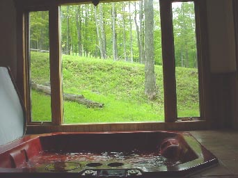 Robyn's Nest Hot Tub Summer View
